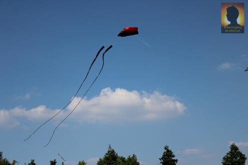 dannyboybroderick-giant-kite